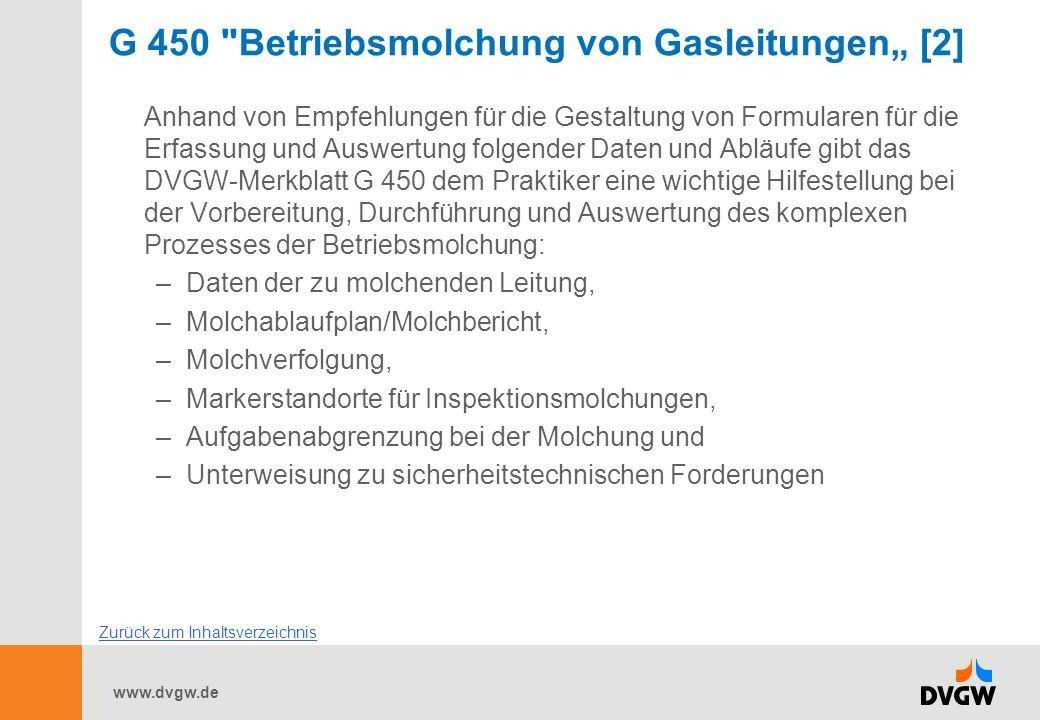 """G 450 Betriebsmolchung von Gasleitungen"""" [2]"""